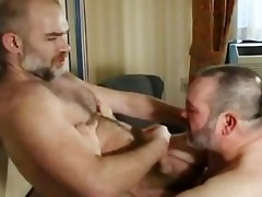 daddy bear fucks cub